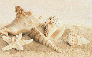 Amalfi sand decor 01 250х400 мм - 13 шт.